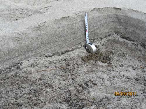 Japan tsunami 2011. Sediment laid down during tsunami flooding.2011-tsunami-sediment