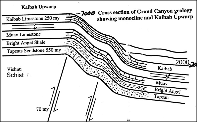 Schematic of upthrust at Grand Canyon showing it was raised vertically about 5000 feet - one mile