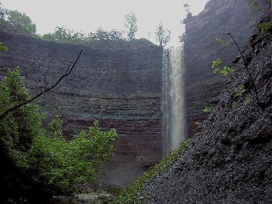 The escarpment in Hamilton Ontario shows vertical sedimentary rock many meters thick